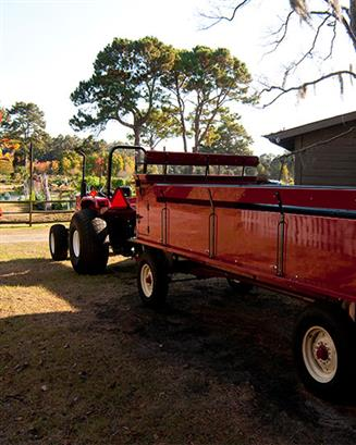 Private Thanksgiving Wagon Rides