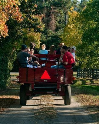 Thanksgiving Wagon Ride