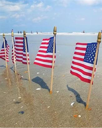 salute from the shore