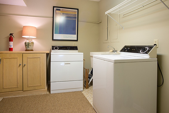 5-Snowy-Egret----Laundry-Room-8496-big.jpg