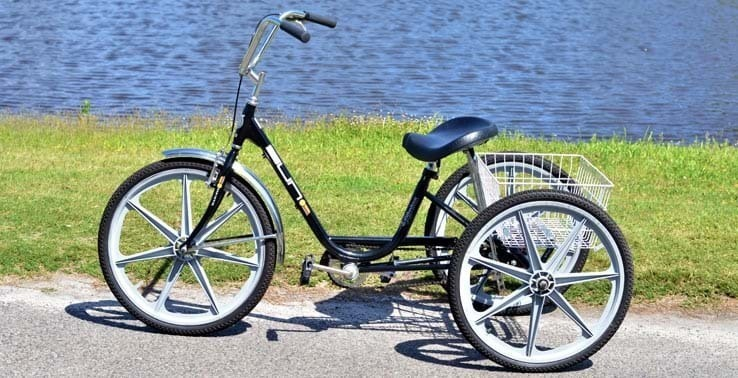 https://www.seapines.com/images/bike/adult_3wheeler_med.jpg